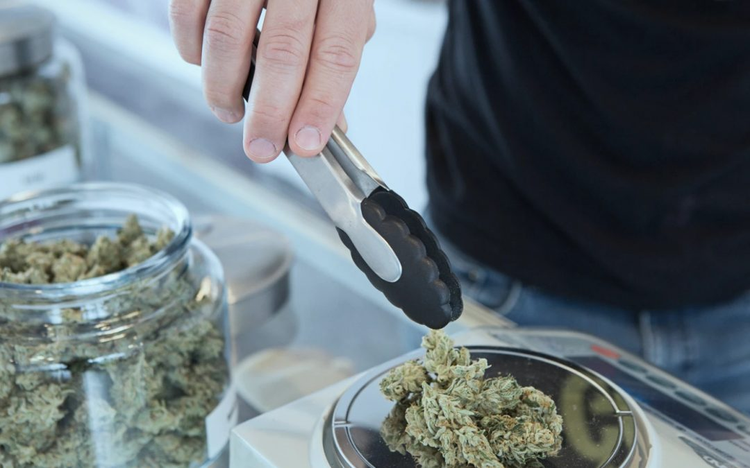 Marijuana Dispensary Insurance